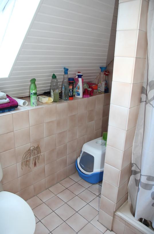 badezimmer selbst renovieren: vorher/nachher – design dots, Badezimmer