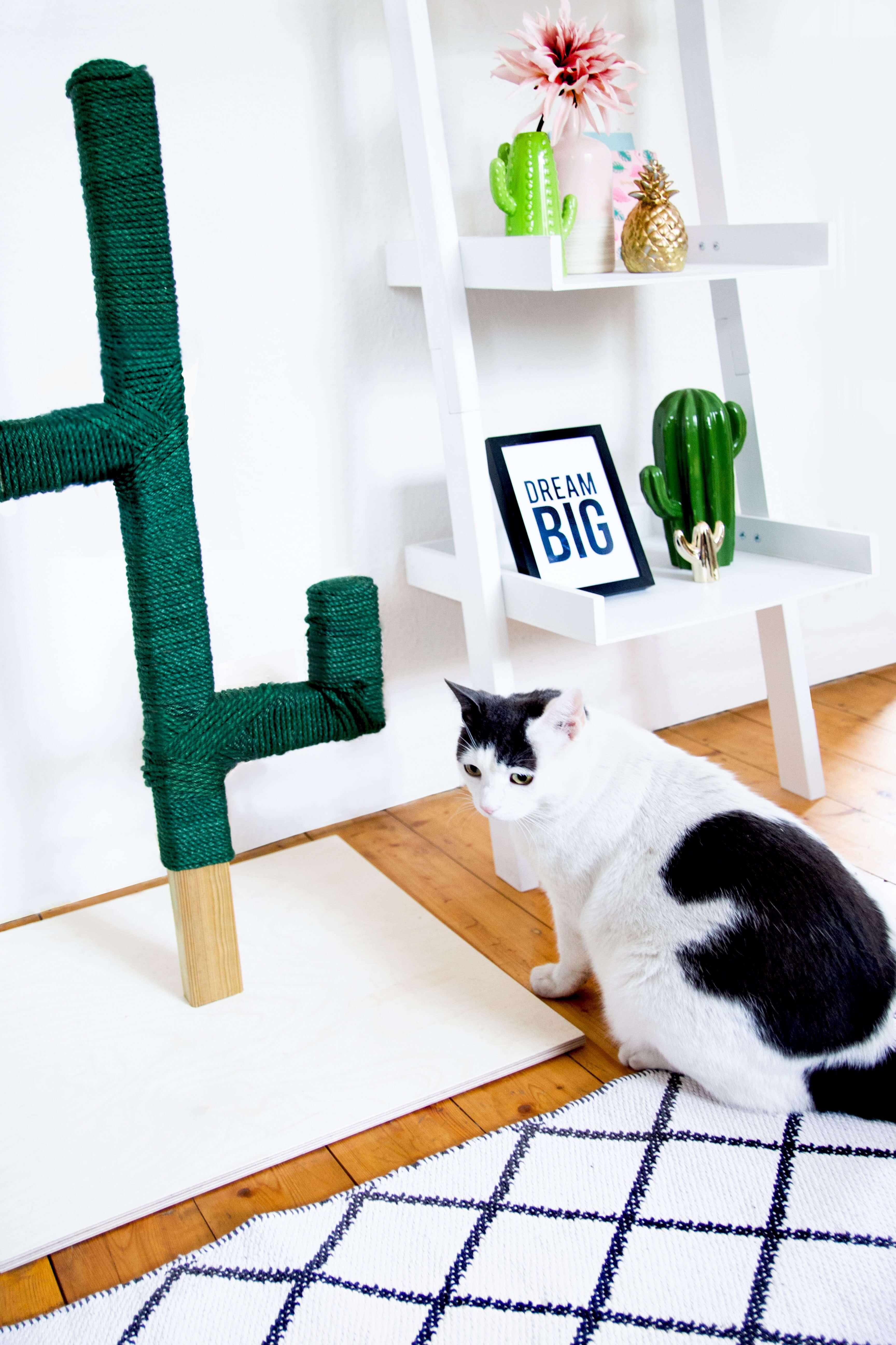 Kaktus Kratzbaum Selber Bauen Design Dots
