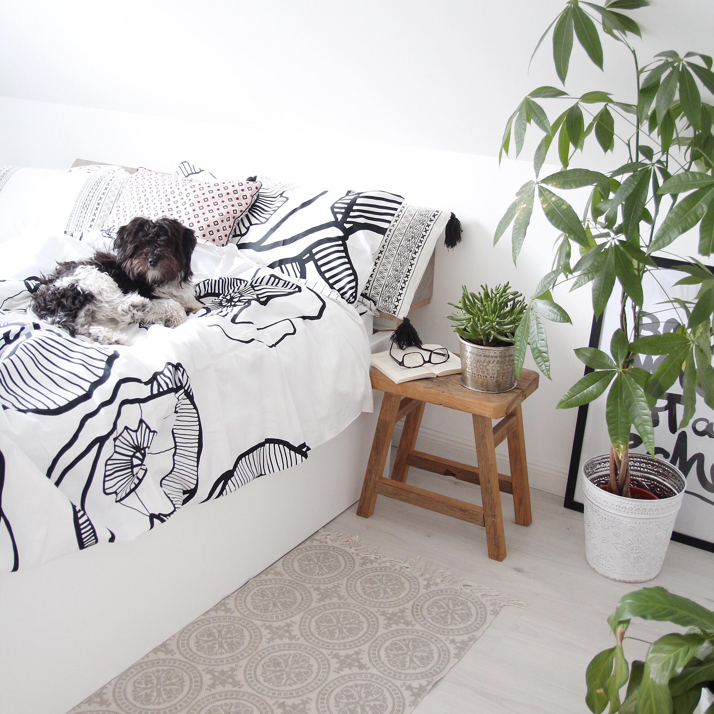 Sonst Ist Im Schlafzimmer Eigentlich Alles Beim Alten, Obwohl Es Mir In Den  Fingern Kribbelt, Eine Neue Deckenleuchte Und Einen Teppich Zu Kaufen.