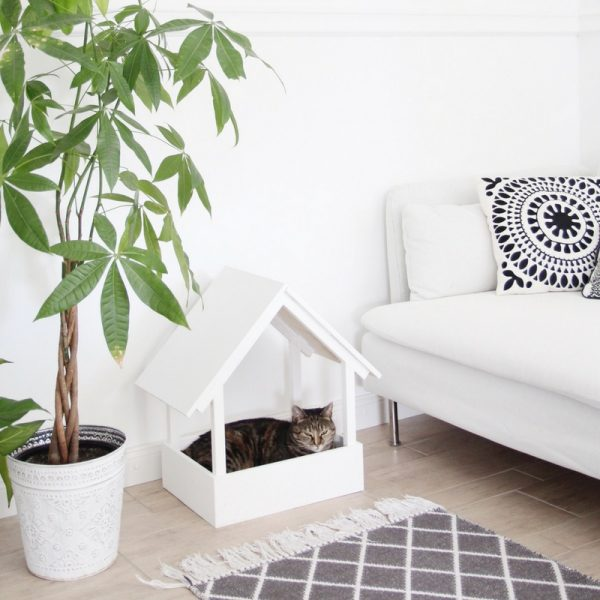 Katzenmöbel-selbst-bauen